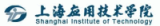 Shanghai Institute Logo
